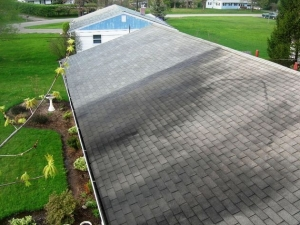 Roof and dumpster pads